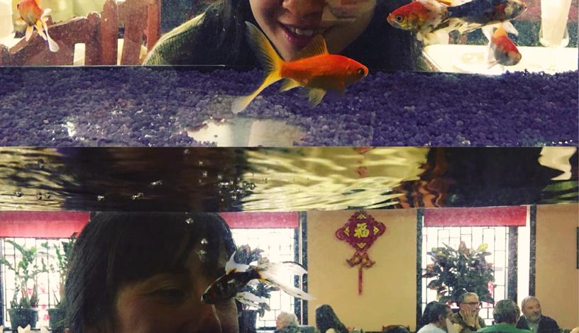 aquario-usera