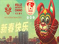 ano-nuevo-chino-2018-madrid-09-28-02-2018-feliz-ano-del-perro